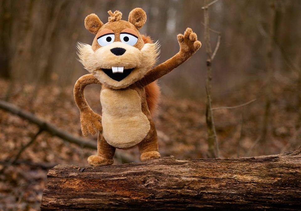 Meet Chip the Squirrel